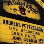 Addreas Petterson Live